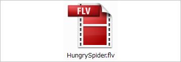 Flv_02
